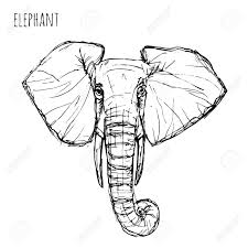 elephant face drawing drawing art ideas