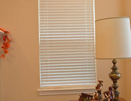 Home Decorators Collection 2 Inch Faux Wood Blinds Vinyl Mini Blinds
