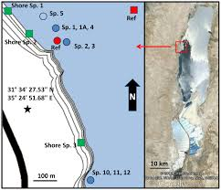 Map Of The Dead File Map Of Underwater Fresh Water Springs In The Dead Sea 2012