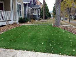 California Landscaping Ideas Fake Lawn Long Barn California Landscaping Business Front Yard