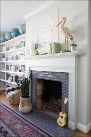 living room marvelous electric fireplace heater insert menards