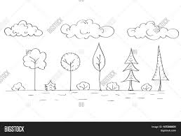 forest tree woods sketch simple vector u0026 photo bigstock