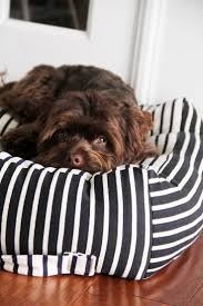 1174 best pet stuff diy images on pinterest cats cat beds and
