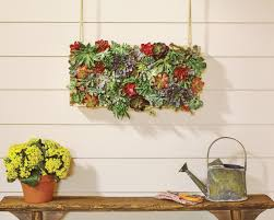 home depot virtual party for a vertical succulent garden the
