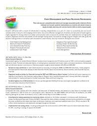 excellent work experience professional chartered accountant resume sa JFC CZ as