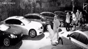 black friday cars three cars recovered after eight vehicles stolen off tampa car lot