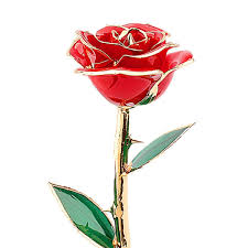 Rose Dipped In Gold Valentines Gifts For Her Rose Zjchao 24 Carat Gold Dipped Real Red