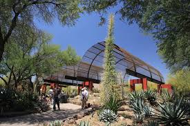 Scottsdale Az Botanical Gardens Desert Botanical Garden Outdoors Stories