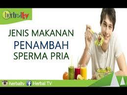 jenis makanan penambah sperma pria herbal tv youtube