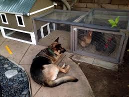 chicken coop plans easy to clean 3 vermontmaple chicken coop