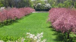 Prospect Park Botanical Garden Botanic Garden The Cultural Landscape Foundation