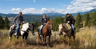 Montana How Far Can A Horse Travel In A Day images Horses jpg
