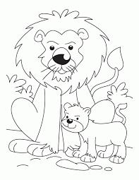 lion cub coloring pages download free lion cub