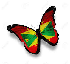 Grenda Flag Grenada Flag Butterfly Isolated On White Stock Photo Picture And
