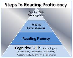 academic literacy language u0026 learning level 3 nbss