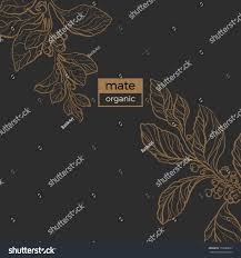 template realistic branches floral art line stock vector 733686607