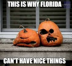 Fall Memes - 15 downright funny memes you ll only get if you re from florida