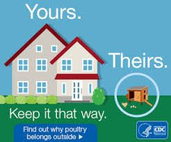 multistate outbreaks of human salmonella infections linked to live