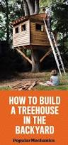 How To Build A Putting Green In My Backyard How To Build A Treehouse For Your Backyard Diy Tree House Plans