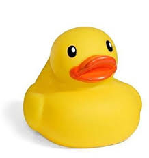 infantino yellow rubber duck toys