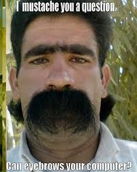 Meme Moustache - the moustache blog moustache memes