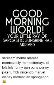 Funny Sarcastic Memes - good morning world your little ray of sarcastic sunshine has