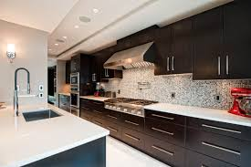 Espresso Cabinet Kitchen 100 Kitchen Cabinets Burnaby Kitchen Cabinets For Less Port