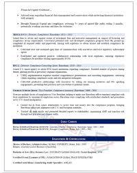 sample resume executive vice president executive resume samples professional resume samples