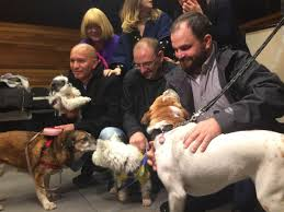 queen s dogs workers who found 16 stolen dogs hailed as heroes toronto star