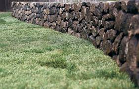How To Regrade A Backyard How To Sod A New Lawn This Old House