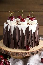 this black forest cake combines rich chocolate cake layers with