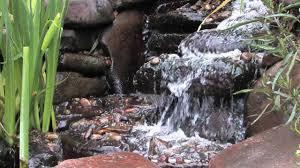 water garden pond design youtube