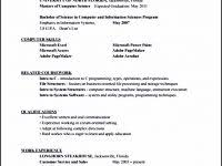Hvac Resume Examples by Sales Manager Resume Pdf Templatezet