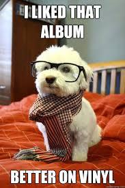 Vinyl Meme - i liked that album better on vinyl hipster dog quickmeme