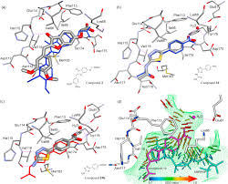 id s d o chambre b identification of protein kinase ck2 inhibitors solvent dipole