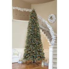 te 25 ten fazla benzersiz 12 ft tree fikri
