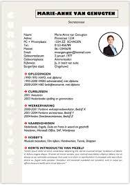 Cv Sjabloon Nederlands mooi curriculum vitae zelf maken met een sjabloon pimpjecvnu nl