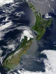 native new zealand plants list geography of new zealand wikipedia