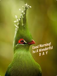 good morning hope quote good morning sweetheart i hope you had a good night put on your