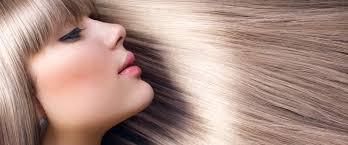 hair salon shear bliss hair salon a virginia hair salon