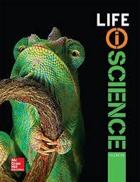 glencoe 4th grade math book pdf buy now glencoe math accelerated