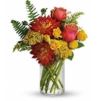 Flower Shops In Greensboro Nc - all occasions flower delivery portland or starting at just 42 95