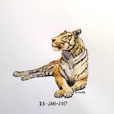 relaxing tiger u2013 dan tabata