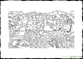 free printable tropical rainforest coloring pages maeluke no 18