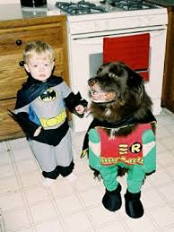Batman Robin Halloween Costumes Girls Pets Halloween Costumes