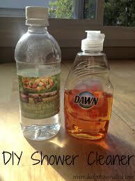 Bathtub Cleaner Vinegar 004 Jpg Best Shower