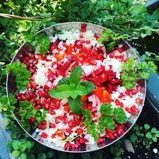 vegan recipes diet for heart disease diet for cancer diet