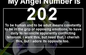 number 202 means that is in the air discover why
