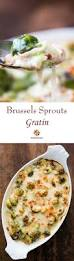 thanksgiving dinner in a can 17 best images about thanksgiving dinner on pinterest green bean