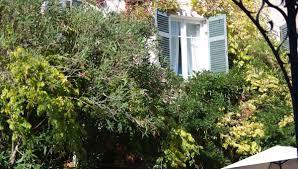 Un Mas En Provence Mas De Chastelas Official Website Mas De Chastelas